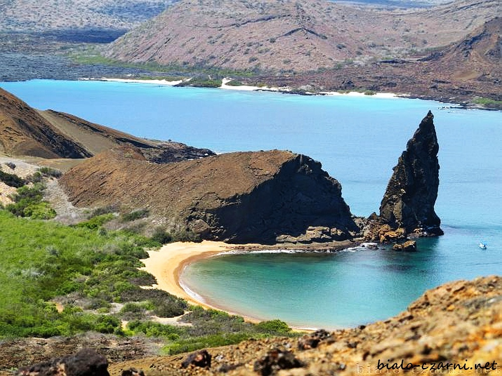 Galapagos92_2_3