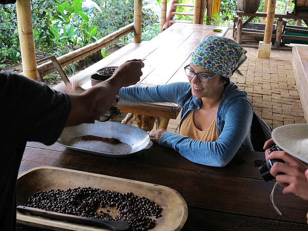 Kolumbia, plantacja kawy18