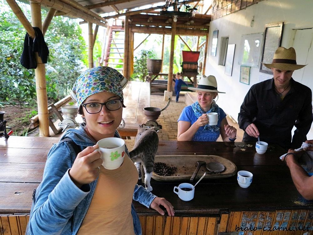 Kolumbia, plantacja kawy23