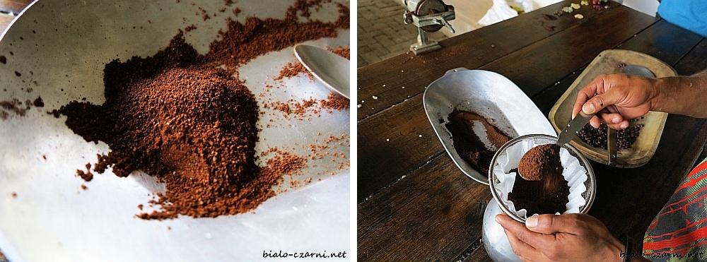 kolaż plantacja kawy4