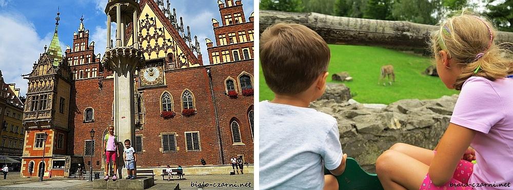kolaż Wrocław