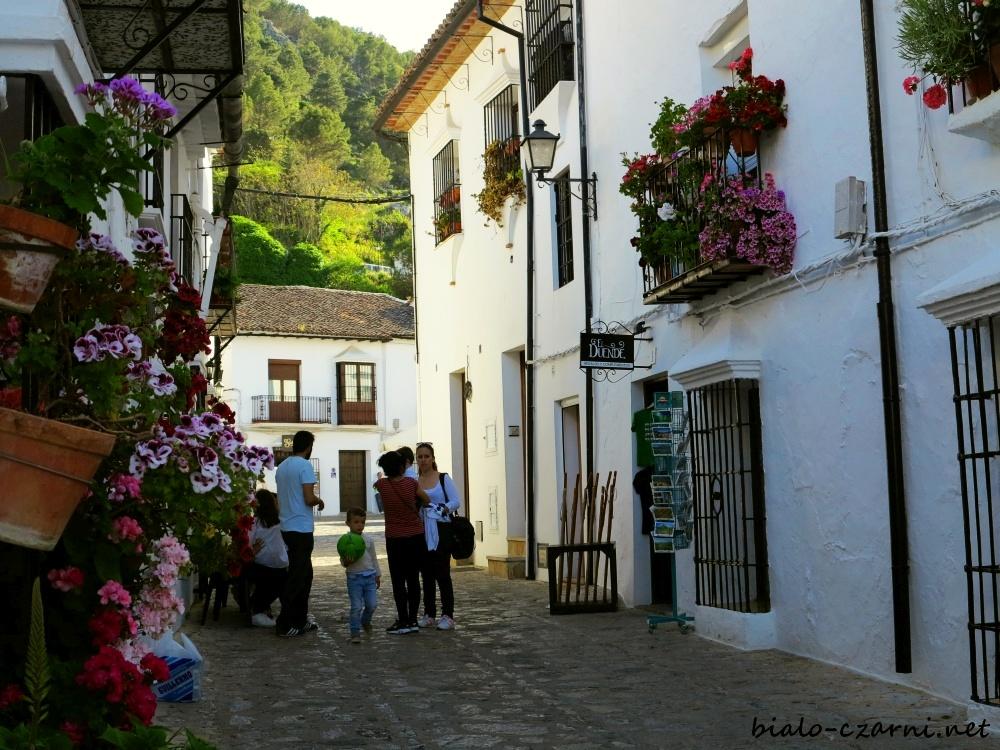 Hiszpania, Sierra de Grazalema16