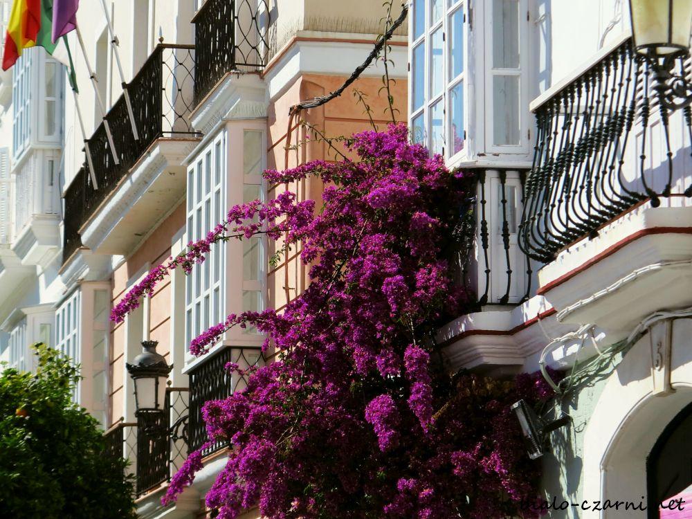 Hiszpania, Kadyks18