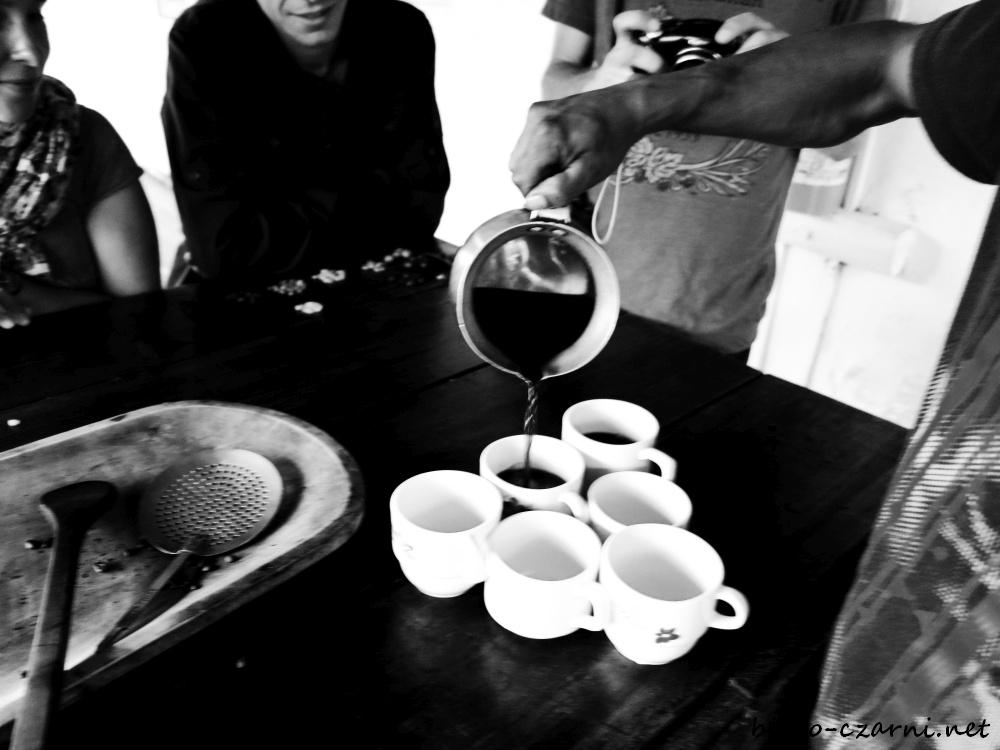 Kolumbia, plantacja kawy22