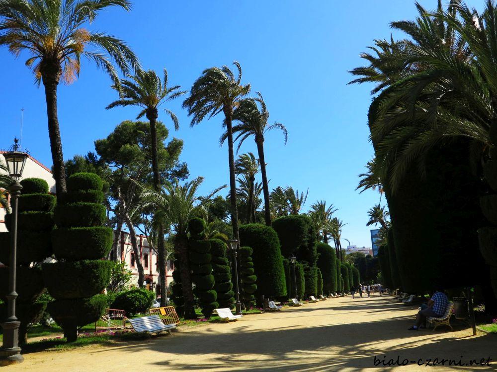 Hiszpania, Kadyks21